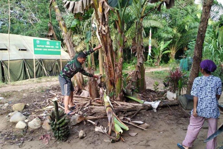 Sertu Teguh bantu warga tebang pohon pisang