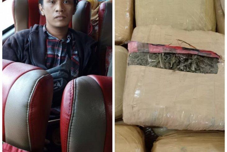 Di tengah pandemi COVID-19, pemilik 30 kg ganja warga Bandung ditangkap Satresnarkoba Polres Langkat