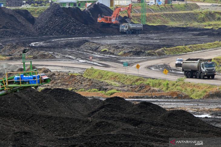 Harga batu bara acuan menyentuh level tertinggi dalam 10 tahun terakhir