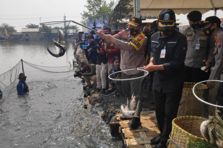Kapolda: Ketahanan pangan bagian dari Kampung Tangguh COVID-19