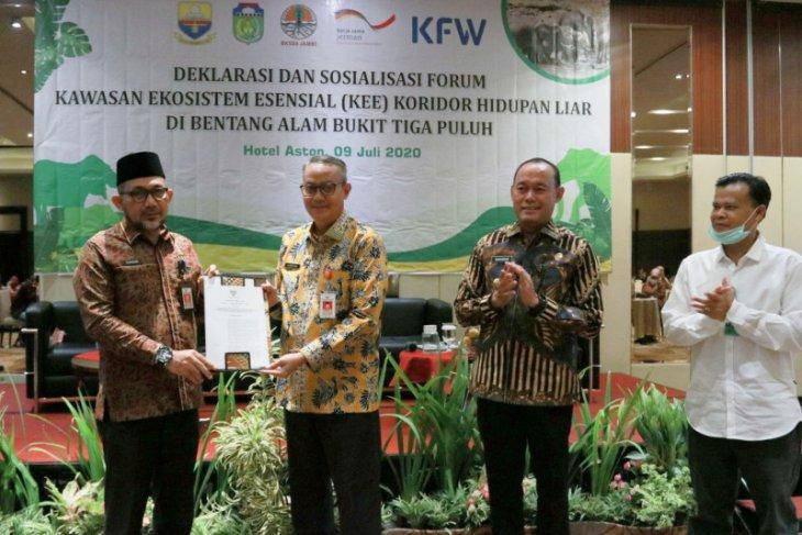 Pemprov Jambi dukung konservasi Gajah Sumatera di Bentang Alam Bukit Tiga Puluh