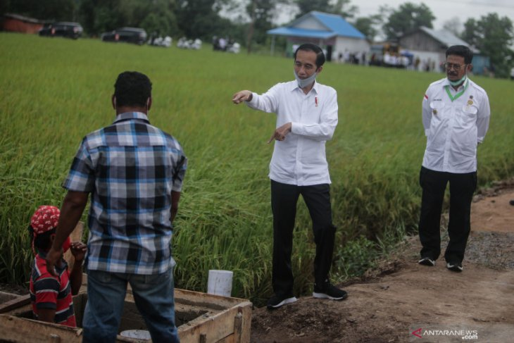 Two provinces' food estate development should be completed in 2021
