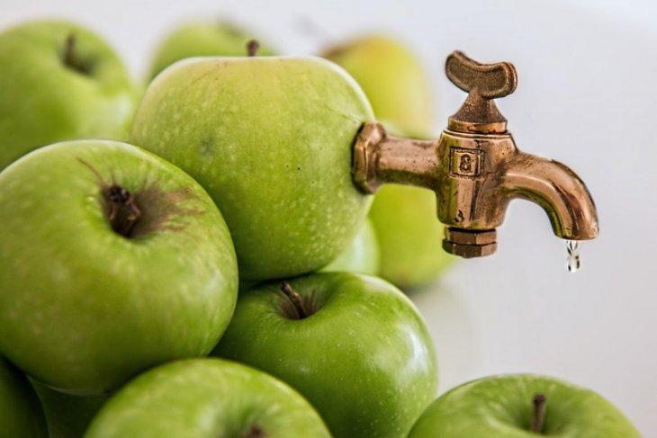 Sehatkah hanya minum jus sayur dan buah seharian?
