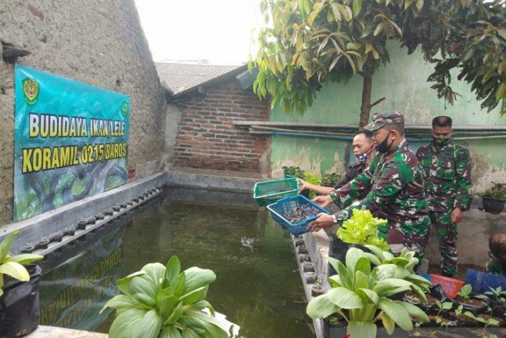 Di tengah pandemi COVID-19, prajurit TNI kembangkan budidaya lele