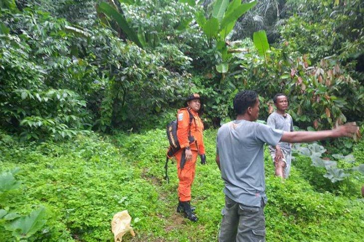 Penebang pohon dilaporkan hilang di hutan Aceh Tenggara