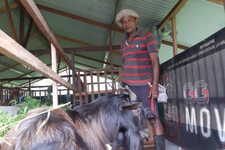 Pemkab Kubu Raya salurkan 32 hewan kurban ke 9 kecamatan