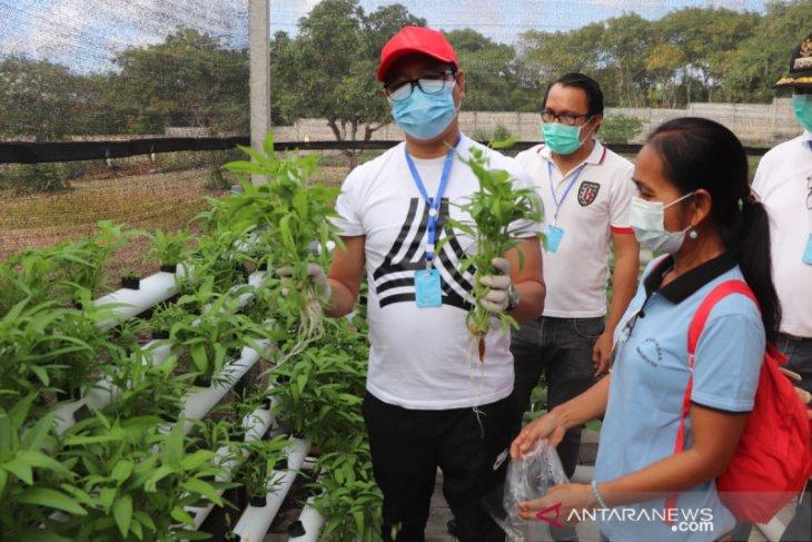 Wabup Badung apresiasi pertanian kota oleh masyarakat