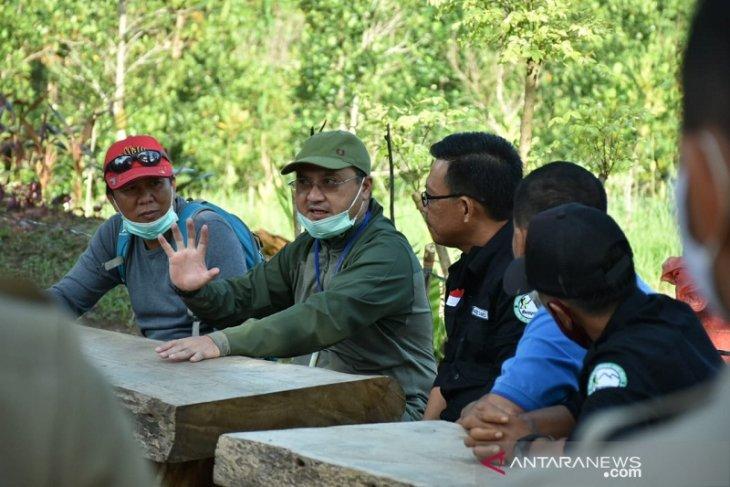 Gubernur Babel gelar gerakan tanam durian di kawasan destinasi wisata alam