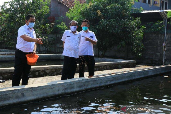 Pemkot Tangerang optimalkan kampung iklim - tematik jadi ketahanan pangan
