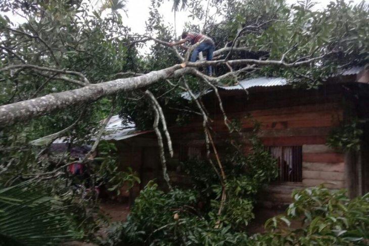 Angin kencang landa Aceh Utara, rusakkan rumah dan kubah masjid