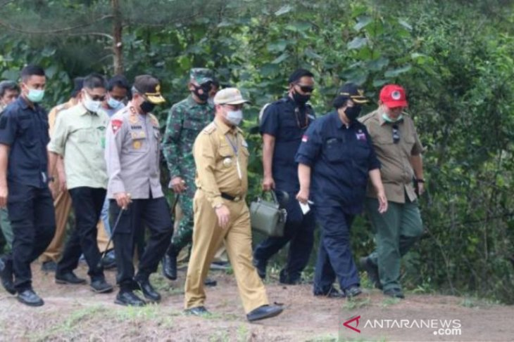 Presiden Jokowi pilih Babel wakil wilayah Sumatera penanaman mangrove