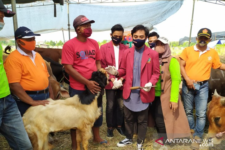 Mahasiswa UMS edukasi masyarakat prosedur penyembelihan hewan saat pandemi