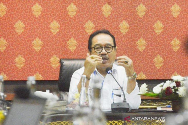 Wagub Bali minta program pariwisata adaptasi kebiasaan baru dimatangkan