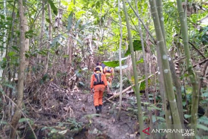 Pencarian terhadap dua bocah hilang di hutan  dihentikan sementara