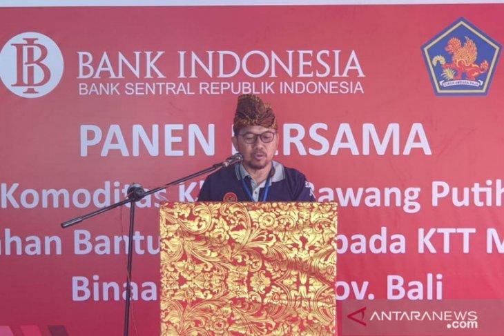 BI Bali naikkan produktivitas bawang putih lewat pendampingan KTT Manik Pertiwi