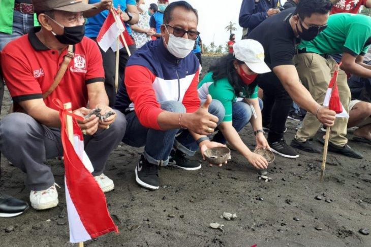 Sekdakab Gianyar pimpin pelepasliaran 10.000 tukik di Pantai Saba