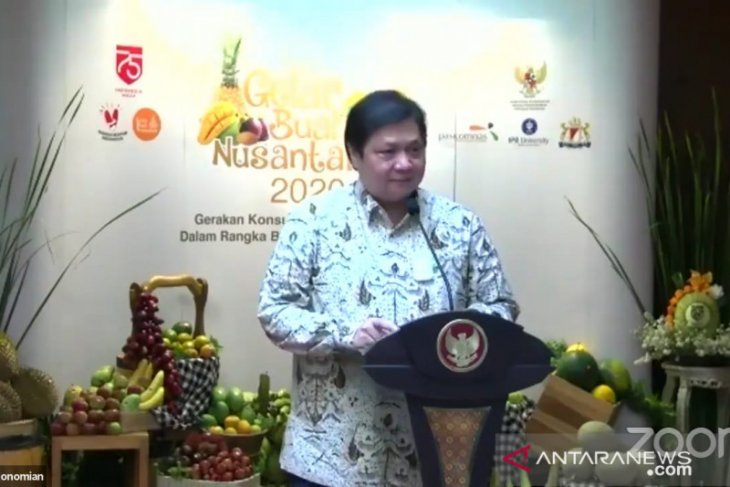 Airlangga sebut buah-buahan dapat bantu pemulihan ekonomi