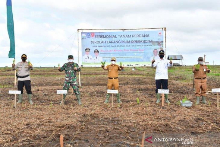 Climate Field School in HSS start planting in dry season