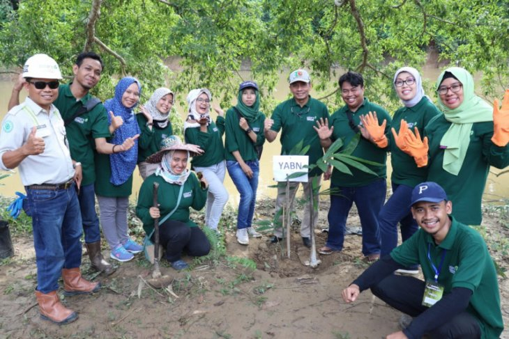 YABN helps Tabalong to handle critical land by planting bamboo