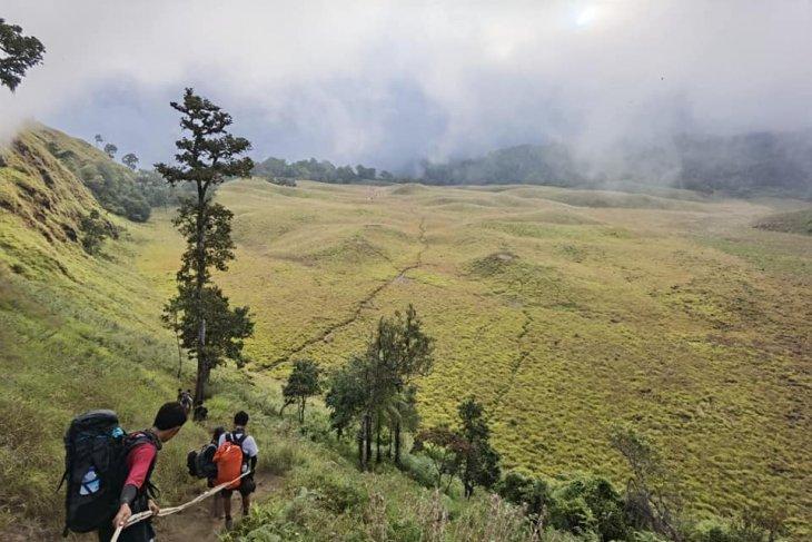 Wisata pendakian Gunung Rinjani Lombok telah diizinkan