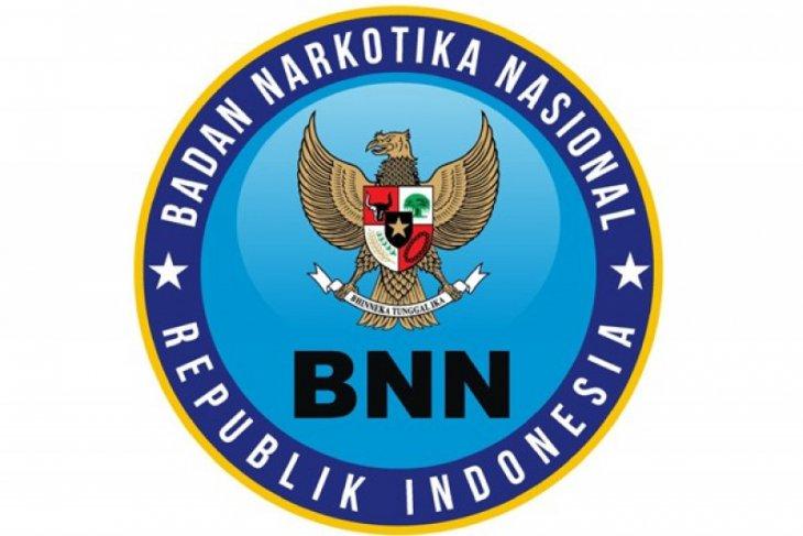 Satpam BNNK Aceh Selatan ditangkap, diduga bawa 3 Kg ganja ke Sumut