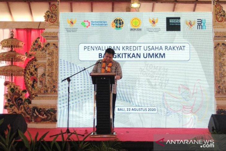 Menko Perekonomian dorong UMKM Bali manfaatkan KUR untuk ekspor saat COVID-19