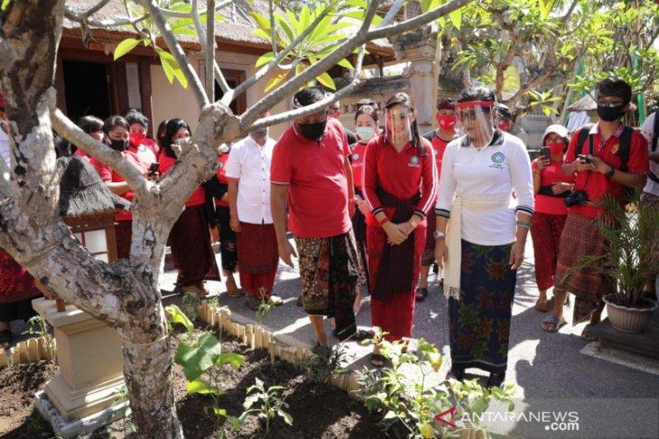 Di Gianyar, Putri Koster resmikan Rumah Kreatif dan Taman