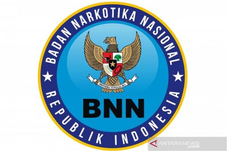 BNN: Tidak ada bantuan hukum kepada satpam pembawa ganja asal Aceh Selatan