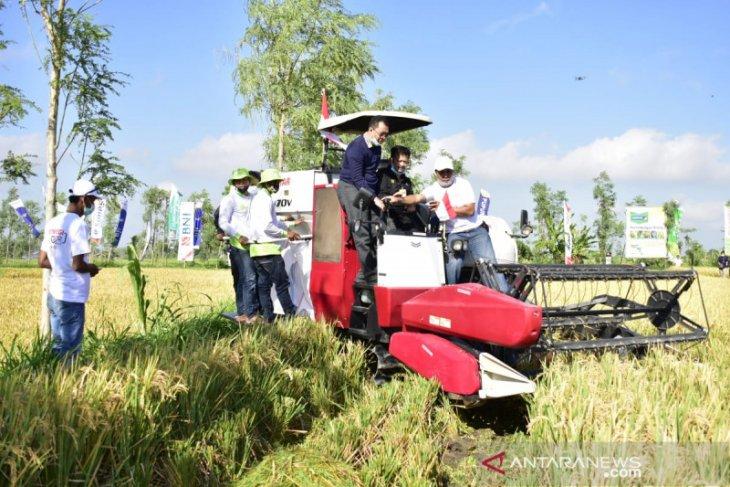 Mentan bantu Rp120 miliar perkuat pertanian NTB