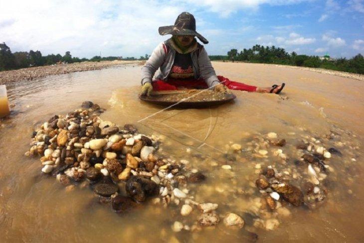 Penambang emas tradisional di Sarolangun