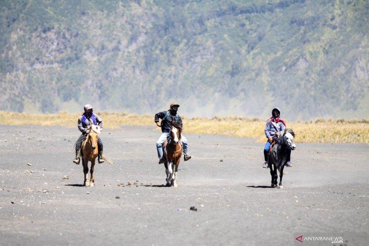 Jasa penyewaan kuda di Bromo