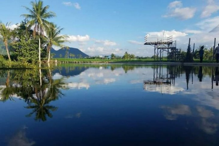 Take a peek at the green Kampung Jawa of Jaro Village