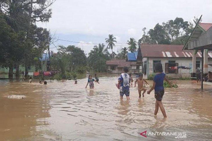 Over 1,000 homes flooded in Central Kalimantan