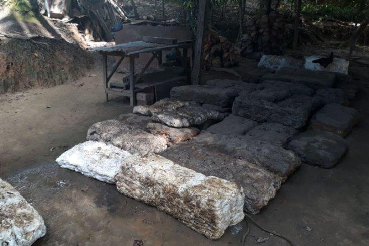 Petani karet Muarojambi keluhkan harga getah anjlok sampai Rp5.000 per kilogram