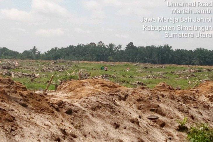 PTPN IV Kebun Bah Jambi kelola lahan HGU