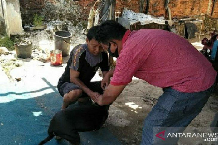 Pemkot Bengkulu berikan vaksin rabies untuk hewan peliharaan