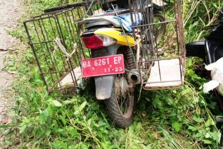 Kendaraan dinas dibawa berburu babi, Ini kata Pemkab Tanah Datar