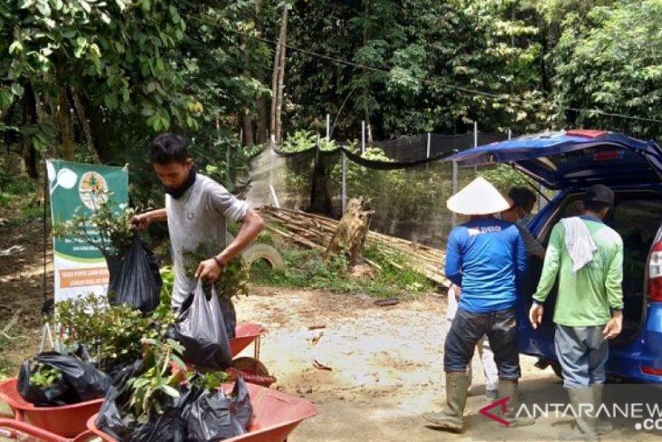 Dishut Jambi bagikan 200 bibit tanaman gratis untuk warga Jambi