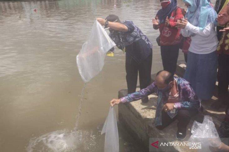 Banjarmasin releases 5,000 mascot fish into Martapura River