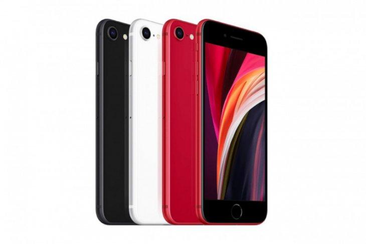 iPhone SE 2020 sudah bisa dipesan, inilah harganya