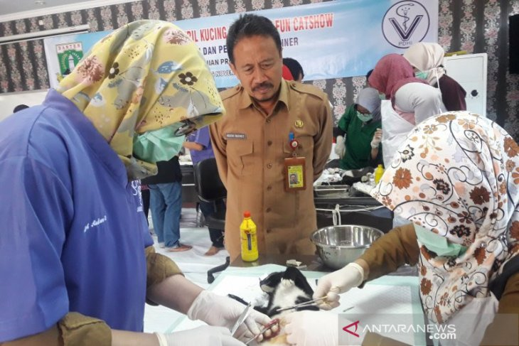 Distan Banten dukung program Indonesia bebas rabies 2030