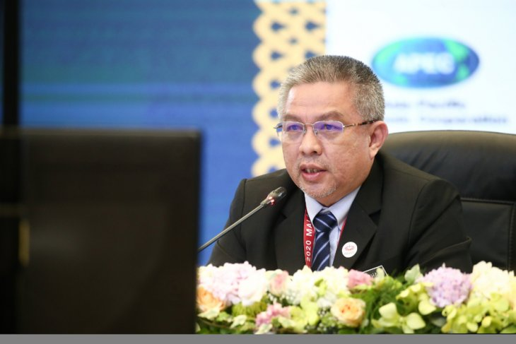 APEC presses for greater investment in health systems