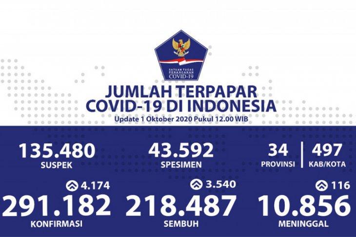 Positif COVID-19 di Indonesia bertambah 4.174, total 291.182 kasus