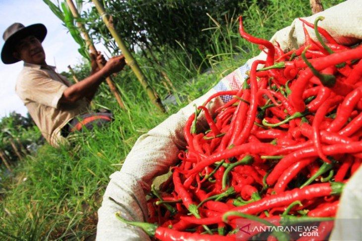 Wakil Bupati: KTNA harus mampu kembangkan produk pertanian