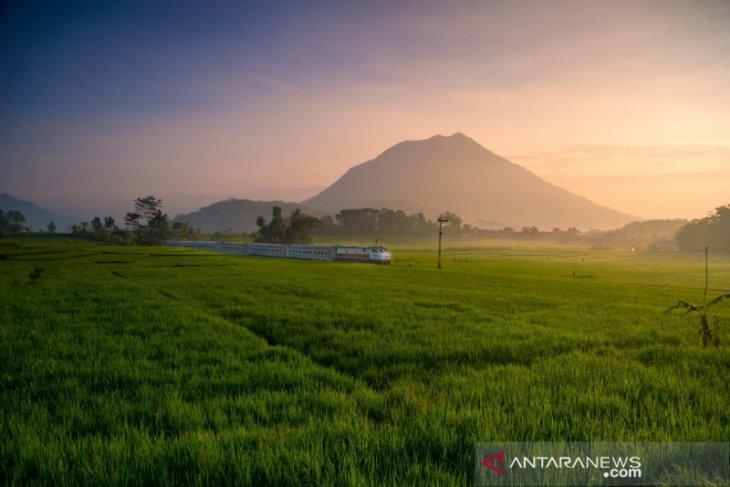 KA Wijaya Kusuma rute Ketapang-Cilacap kembali beroperasi saat akhir pekan