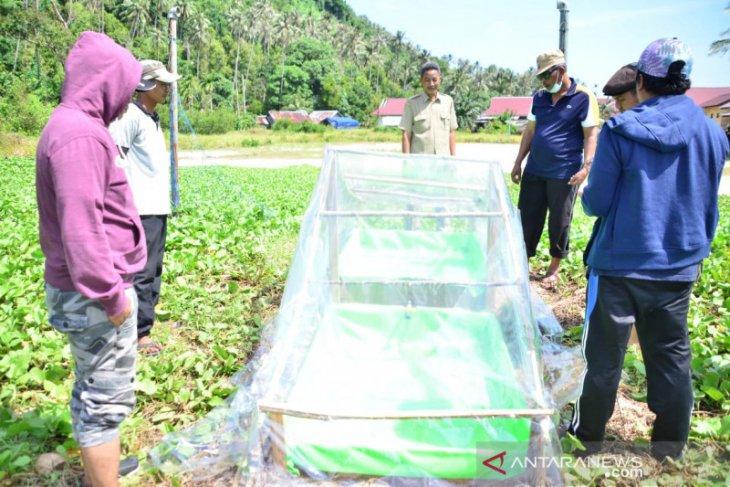 Citra Duani : Pulau Pelapis berpotensi produksi garam