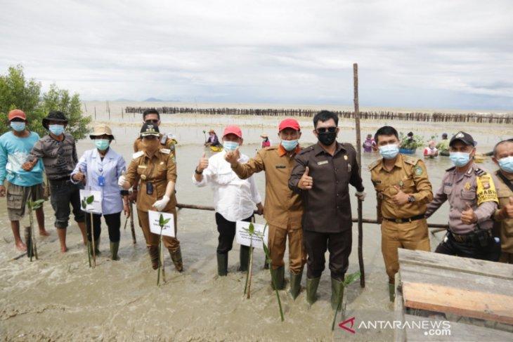 Tjhai Chui Mie tanam 25 ribu batang mangrove bantuan KKP