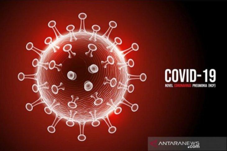Kasus baru COVID-19 di Indonesia  konsisten di bawah 4.000