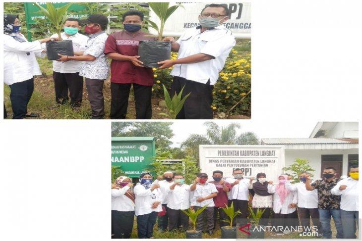 Agar tetap produktif ditengah COVID-19, Polbangtan Medan bagikan bibit Kelapa Pandan ke petani