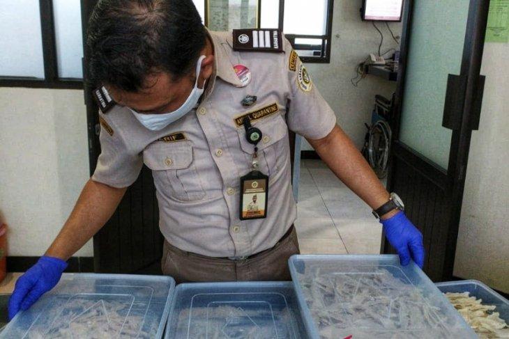 Gorontalo memiliki potensi bisnis sarang burung walet